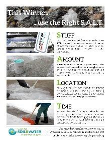 This winter use the right s.a.l.t. - winter article